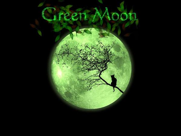 绿月中文版(Green Moon)下载
