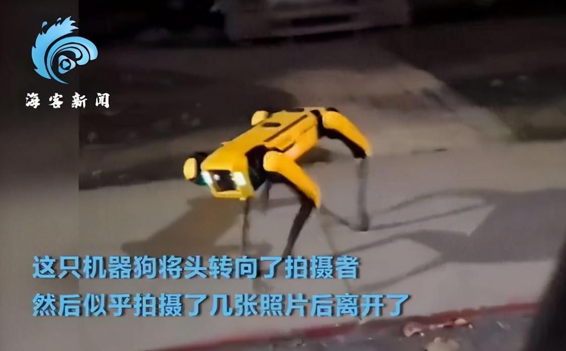 机器狗夜晚独自在街头游荡,你觉得炫酷还是恐惧?