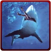 愤怒的鲨鱼袭击模拟器