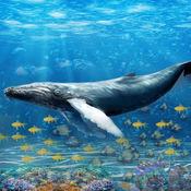 蓝鲸生存挑战模拟器游