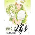 老公嫁到 七猫小说