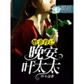 婚非得以:晚安,叶太太 七猫小说