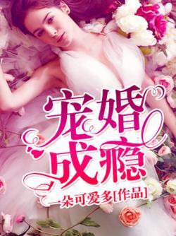 宠婚成瘾 七猫小说
