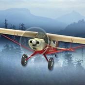 飞机飞行丛林飞行员模拟器