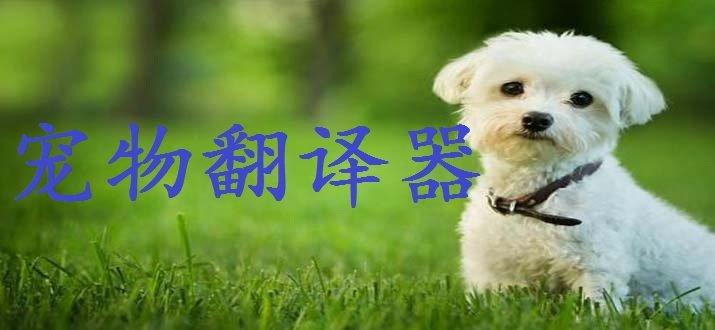 宠物翻译器app
