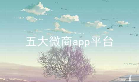 五大微商app平台软件合辑