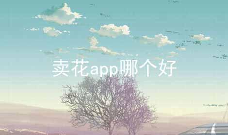 卖花app哪个好软件合辑