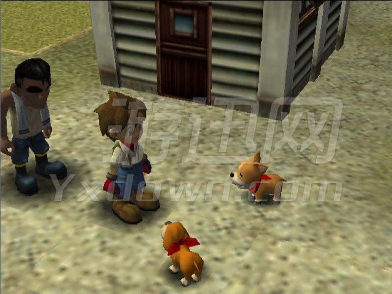 牧场物语:美丽人生特别版 PC版下载