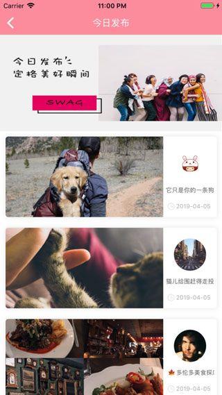 台湾swag软件截图1