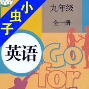 小虫子(人教初中英语九年级全册)