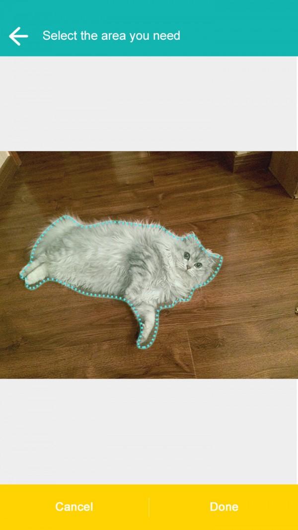 抠图神器飞力猫