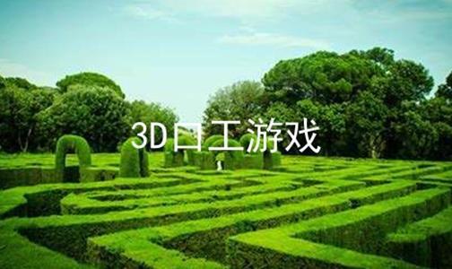3D口工游戏