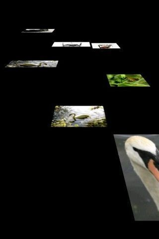 Floating Image软件截图2