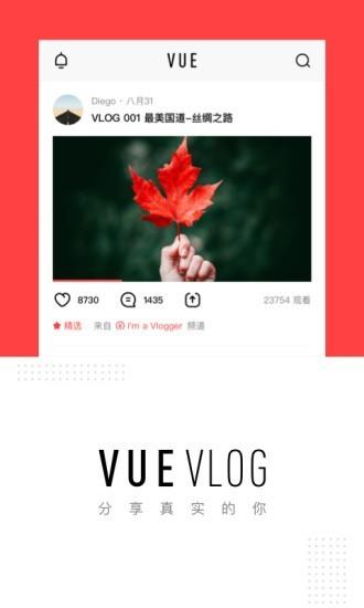 VUE视频