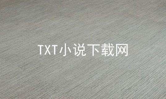 TXT小说下载网