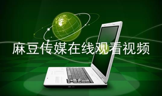 麻豆传媒在线观看视频