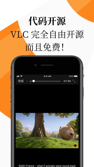 VLC for Mobile软件截图2