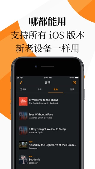VLC for Mobile软件截图1