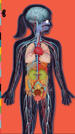 人体探秘软件截图1