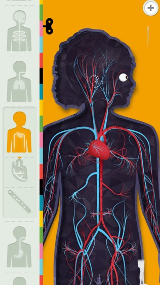 人体探秘软件截图2