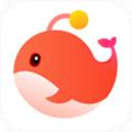 外国人交友软件app