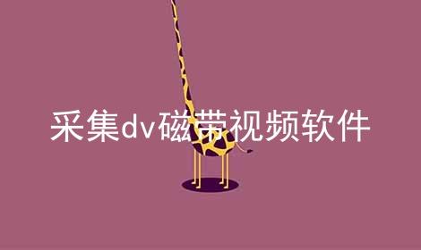 采集dv磁带视频软件