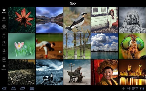 500px专业摄影师图片社区软件截图1