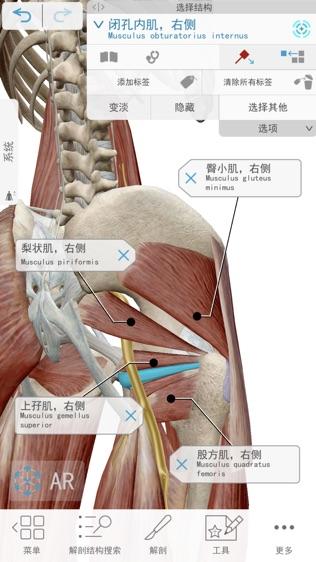 2019人体解剖学图谱软件截图1