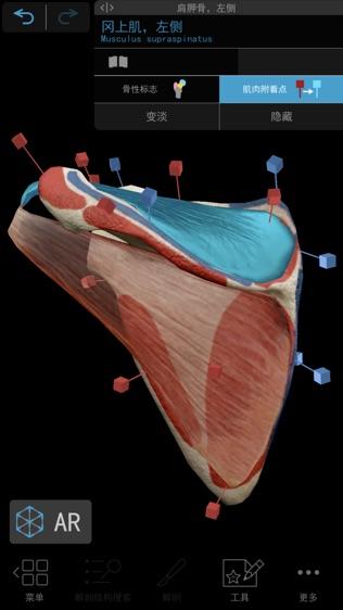 2019人体解剖学图谱软件截图2