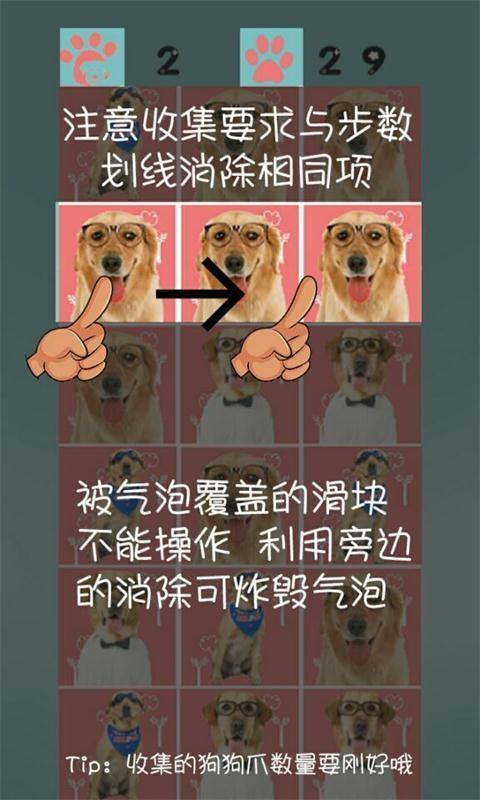 神犬小七消消乐软件截图3