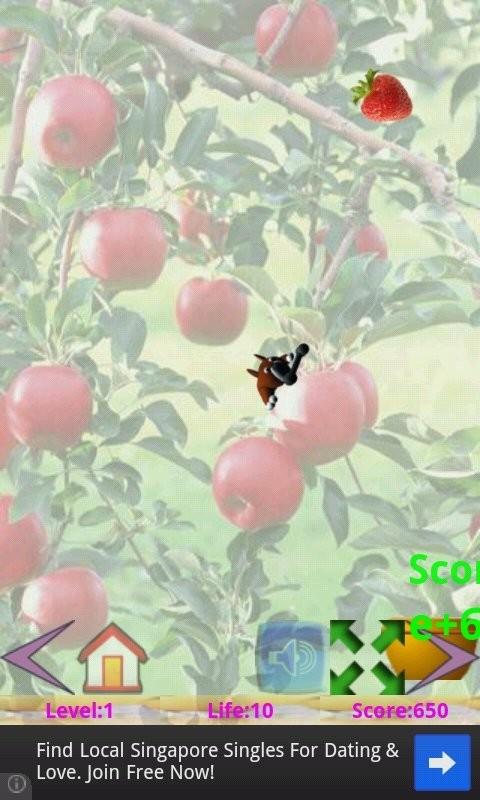 水果大丰收软件截图2