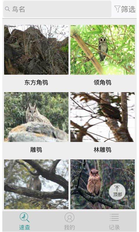 中国野鸟速查软件截图0