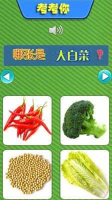 儿童教育游戏学蔬菜