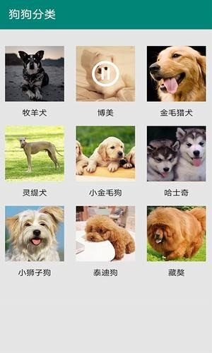汪汪狗语翻译软件截图0