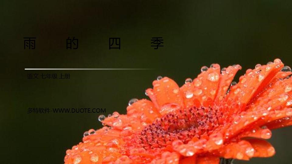 《雨的四季》PPT优质课件下载下载
