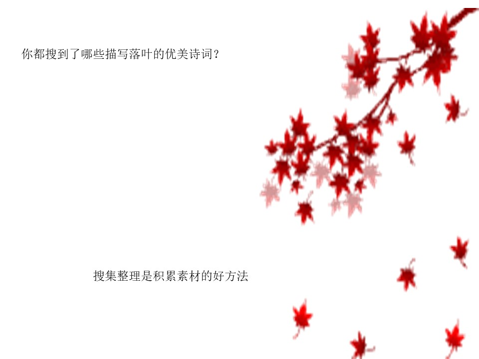 《落叶》PPT课件2下载