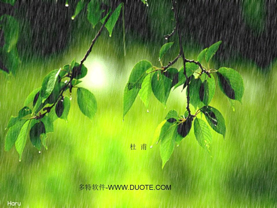 《春雨》PPT课件4下载