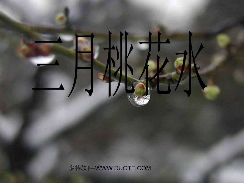 《三月桃花水》PPT课件6下载