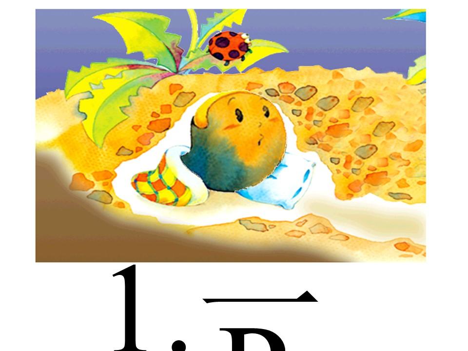 《一粒种子》PPT课件2下载