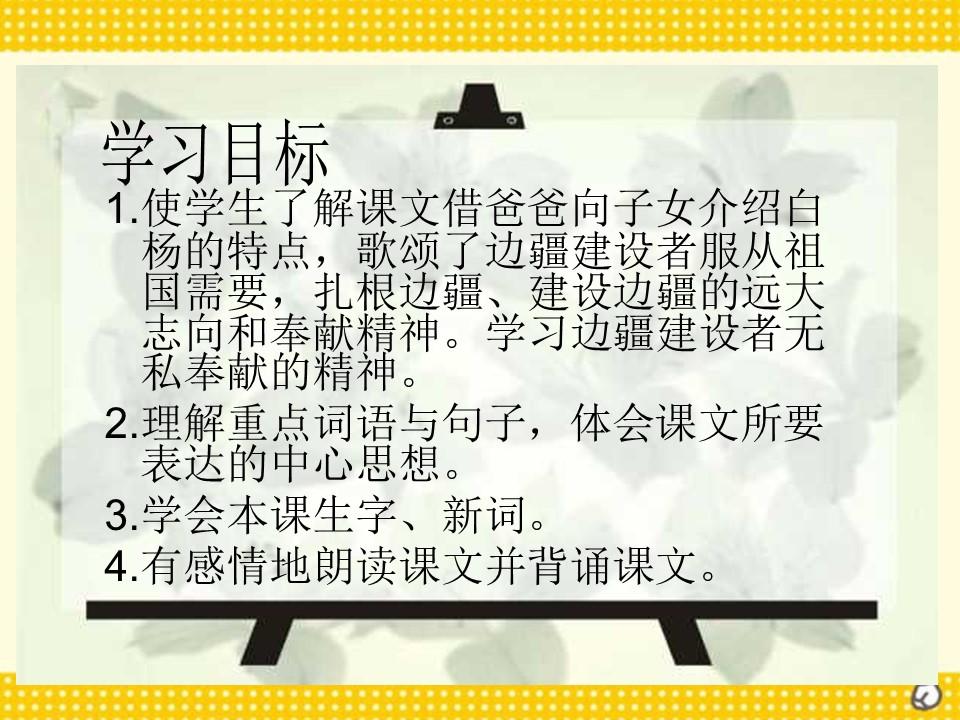 《白杨》PPT课件5下载