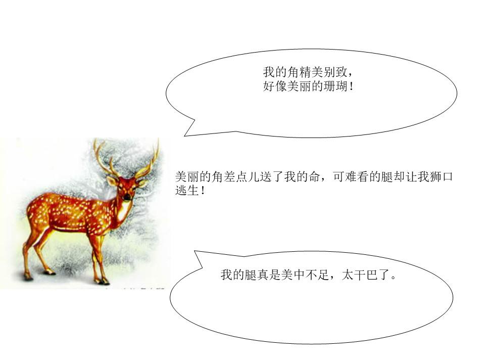 《一只梅花鹿》PPT课件3下载