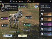 真三国无双霸怎么养马相马?战马坐骑玩法详细讲解