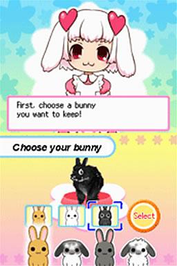 宠物兔下载