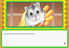动物伴侣系列一-可爱老鼠下载