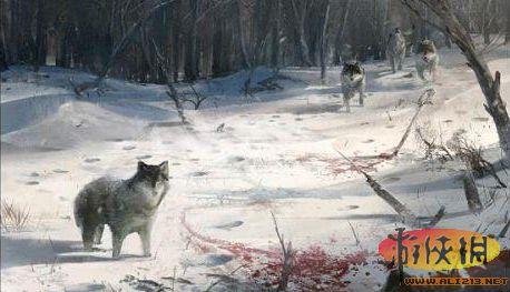 《刺客信条3》狼的猎杀技巧