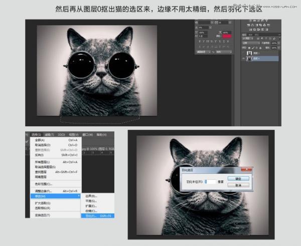 使用Photoshop软件中的通道工具为猫咪抠图