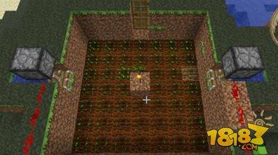 《我的世界》农作物怎么加快生长