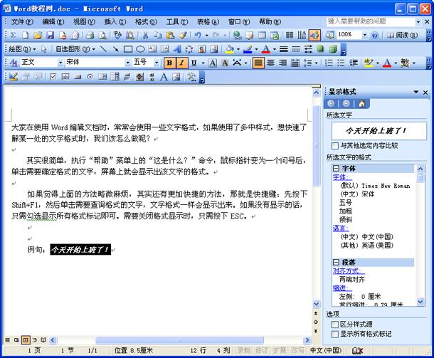 怎么查看Word文档中的文字格式