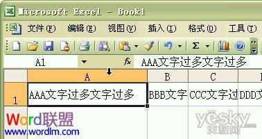 如何设置Excel2003单元格输入文字后自动调整合适行高和列宽